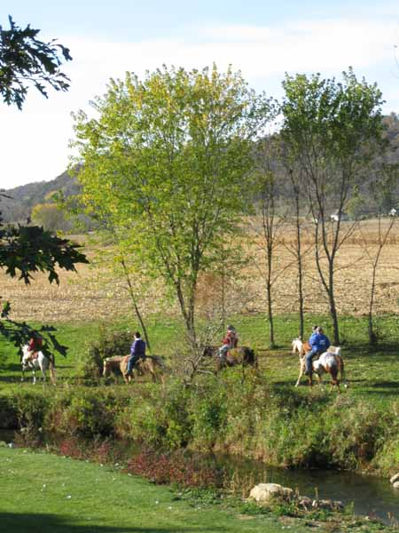 Horse Back riding resort at Winnebago Valley Hideaway